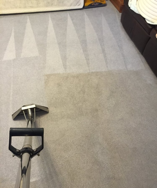 residential carpet cleaning services in Eugene