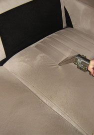 sofa cleaning eugene